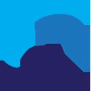 FlashDrive Logo
